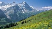 Grindelwald First mit Eiger